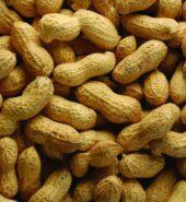 Fresh Peanuts 500gm